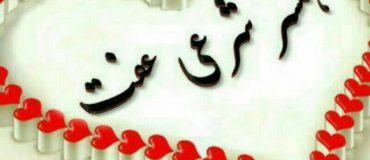 کانال ازدواج موقت پارسیان